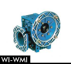 1-WI-WMI