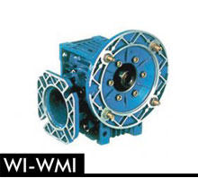 11-WI-WMI